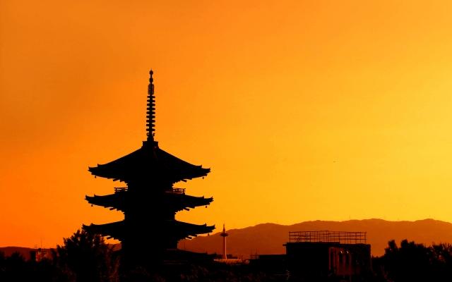 京都 婚活